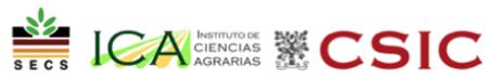 SECS ICA CSIC